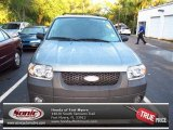 2006 Titanium Green Metallic Ford Escape Hybrid #69460714