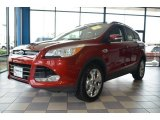 2013 Ruby Red Metallic Ford Escape SEL 2.0L EcoBoost #69461269