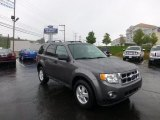 2011 Sterling Grey Metallic Ford Escape XLT V6 #69523522