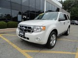 2009 White Suede Ford Escape XLT 4WD #69622508