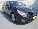 2013 Pacific Blue Pearl Hyundai Sonata GLS #69622344