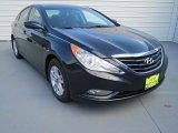 2013 Pacific Blue Pearl Hyundai Sonata GLS #69622343