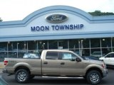 2012 Pale Adobe Metallic Ford F150 XLT SuperCrew 4x4 #69622310