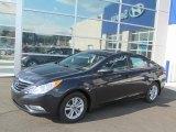2013 Pacific Blue Pearl Hyundai Sonata GLS #69657389