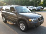 2006 Dark Shadow Grey Metallic Ford Escape XLT V6 4WD #69728314