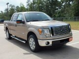 2012 Pale Adobe Metallic Ford F150 XLT SuperCrew #69792244
