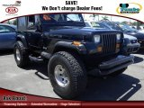 1991 Jeep Wrangler Black