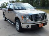 2012 Pale Adobe Metallic Ford F150 XLT SuperCrew #69841897