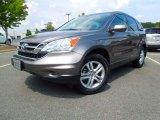 2010 Urban Titanium Metallic Honda CR-V EX-L #69841520