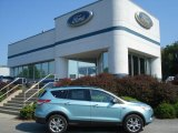 2013 Frosted Glass Metallic Ford Escape SEL 1.6L EcoBoost 4WD #69841083
