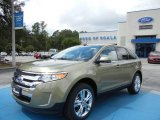 2013 Ginger Ale Metallic Ford Edge Limited #69997489