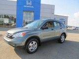 2010 Opal Sage Metallic Honda CR-V LX AWD #69997901