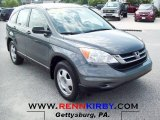 2011 Polished Metal Metallic Honda CR-V LX 4WD #70081493