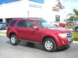2009 Redfire Pearl Ford Escape Limited V6 #6962352