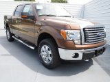 2012 Golden Bronze Metallic Ford F150 XLT SuperCrew 4x4 #70081310