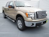 2012 Pale Adobe Metallic Ford F150 XLT SuperCrew 4x4 #70081308