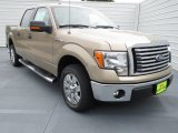 2012 Pale Adobe Metallic Ford F150 XLT SuperCrew #70081303