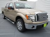 2012 Pale Adobe Metallic Ford F150 XLT SuperCrew #70081297