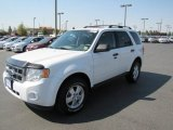 2009 White Suede Ford Escape XLT 4WD #70081514