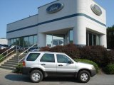 2006 Silver Metallic Ford Escape XLS #70195390