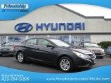2013 Pacific Blue Pearl Hyundai Sonata GLS #70310764