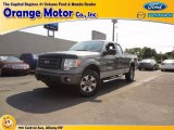 2011 Sterling Grey Metallic Ford F150 STX SuperCab 4x4 #70310864