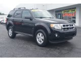 2009 Black Ford Escape XLT #70310834