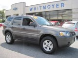 2006 Dark Shadow Grey Metallic Ford Escape Hybrid 4WD #70352800