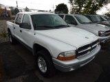 2004 Bright White Dodge Dakota SLT Quad Cab 4x4 #70353055