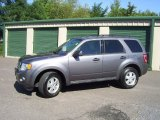 2011 Sterling Grey Metallic Ford Escape XLT V6 4WD #70352419