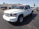 2010 Stone White Dodge Dakota Big Horn Crew Cab 4x4 #70352642