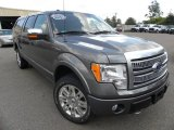 2010 Sterling Grey Metallic Ford F150 Platinum SuperCrew 4x4 #70352615