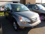 2009 Borrego Beige Metallic Honda CR-V EX 4WD #70407636