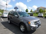 2011 Sterling Grey Metallic Ford Escape Limited V6 4WD #70406902