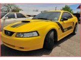 2001 Zinc Yellow Metallic Ford Mustang GT Coupe #7024486
