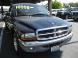 2004 Patriot Blue Pearl Dodge Dakota SLT Club Cab #7024043