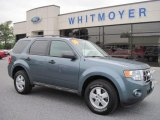 2010 Steel Blue Metallic Ford Escape XLT 4WD #70474551