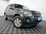 2009 Black Pearl Slate Metallic Ford Escape XLT V6 4WD #70474534