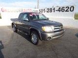 2005 Phantom Gray Pearl Toyota Tundra SR5 Access Cab #70474414