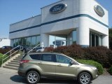 2013 Ginger Ale Metallic Ford Escape SE 1.6L EcoBoost 4WD #70474049