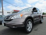 2010 Urban Titanium Metallic Honda CR-V EX AWD #70474689