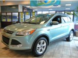 2013 Frosted Glass Metallic Ford Escape SE 1.6L EcoBoost #70617792