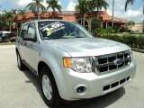 2012 Ingot Silver Metallic Ford Escape XLS #70687303