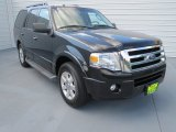 2010 Tuxedo Black Ford Expedition XLT #70749011