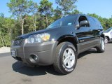 2006 Black Ford Escape Hybrid #70749692