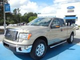 2012 Pale Adobe Metallic Ford F150 XLT SuperCab #70748829