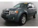 2010 Steel Blue Metallic Ford Escape XLT 4WD #70748672