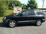 2003 Black Obsidian Hyundai Santa Fe I4 #70818630