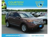2011 Golden Bronze Metallic Ford Explorer XLT #70925935