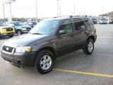 2006 Dark Shadow Grey Metallic Ford Escape XLT V6 #7067253
